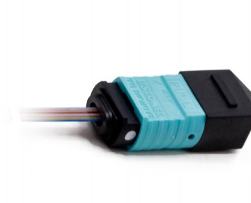 PRIZM LT-MTP short OM3 bare ribbon assembly