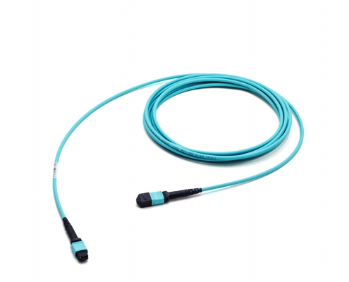 1x24f MTP to 1x24f MTP 24-fiber trunk cable