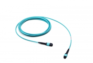 1x24f MTP to 1x24F MTP 24-fiber patch cable