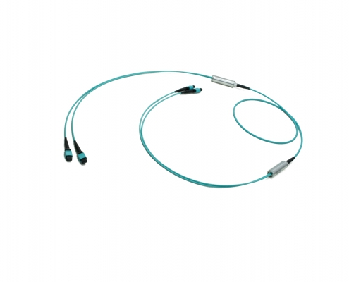 2x12f MTP to 2x12f MTP 24-fiber Duralino trunk cable