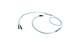 2x12f MTP to 2x12f MTP 24-fiber Miniflex Duralino trunk cable