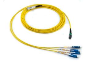 1x12f MTP – 04x SN 08-fiber Duralino fanout